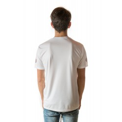 Male t-shirt with national decoration - 013